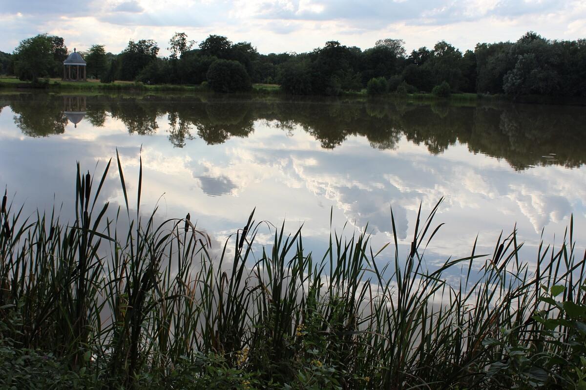 Speilmannsteich mit Spiegelung im Wasser